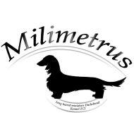 Milimetrus
